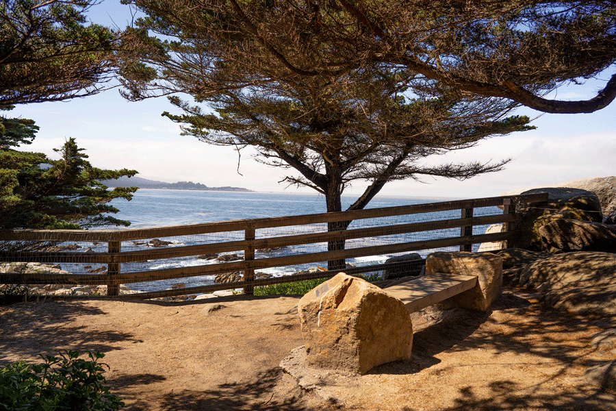 Pescadero Point and Hill Preserve Image 3