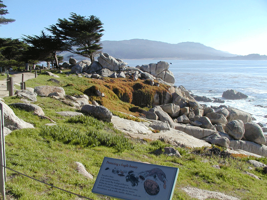 Pescadero Point and Hill Preserve Image